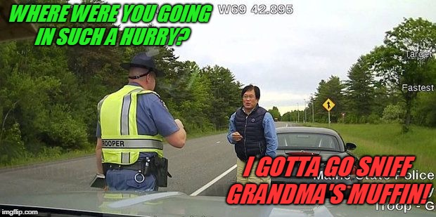 speeding ticket | WHERE WERE YOU GOING IN SUCH A HURRY? I GOTTA GO SNIFF GRANDMA'S MUFFIN! | image tagged in speeding ticket | made w/ Imgflip meme maker