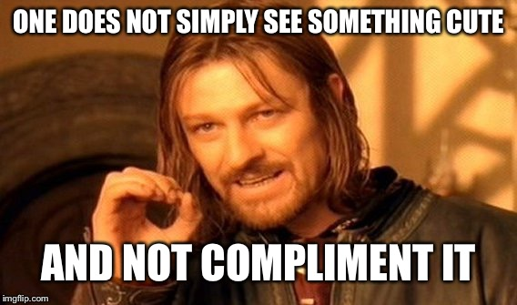 One Does Not Simply Meme | ONE DOES NOT SIMPLY SEE SOMETHING CUTE AND NOT COMPLIMENT IT | image tagged in memes,one does not simply | made w/ Imgflip meme maker