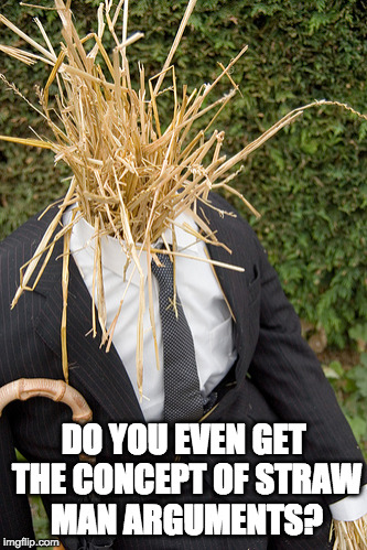 Straw Man Arguments. What part is hard to understand? | DO YOU EVEN GET THE CONCEPT OF STRAW MAN ARGUMENTS? | image tagged in straw man | made w/ Imgflip meme maker