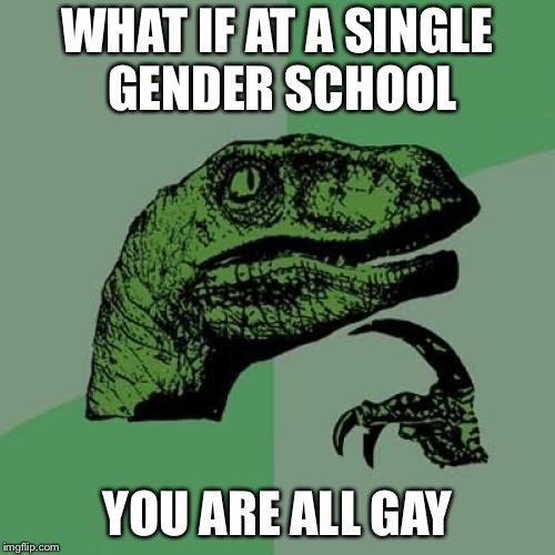 Philosoraptor Meme | WHAT IF AT A SINGLE GENDER SCHOOL YOU ARE ALL GAY | image tagged in memes,philosoraptor | made w/ Imgflip meme maker