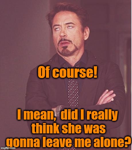Face You Make Robert Downey Jr Meme | Of course! I mean,  did I really think she was gonna leave me alone? | image tagged in memes,face you make robert downey jr | made w/ Imgflip meme maker