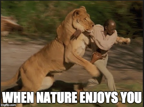 WHEN NATURE ENJOYS YOU | image tagged in nature,reverse,run,lion,human,everyday | made w/ Imgflip meme maker