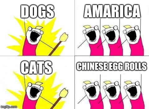 What Do We Want Meme | DOGS AMARICA CATS CHINESE EGG ROLLS | image tagged in memes,what do we want | made w/ Imgflip meme maker