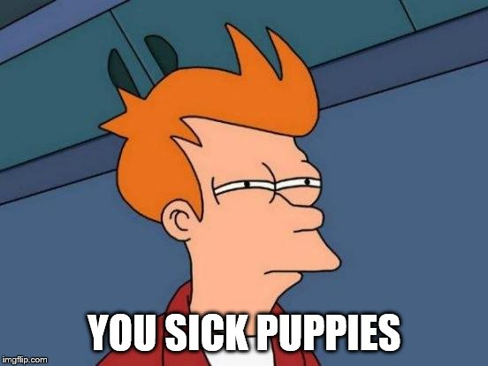 Futurama Fry Meme | YOU SICK PUPPIES | image tagged in memes,futurama fry | made w/ Imgflip meme maker