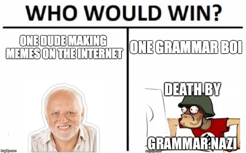 When someone uses the wrong form of your/you're... | ONE DUDE MAKING MEMES ON THE INTERNET ONE GRAMMAR BOI | image tagged in memes,who would win,grammar nazi,datboi,memers | made w/ Imgflip meme maker