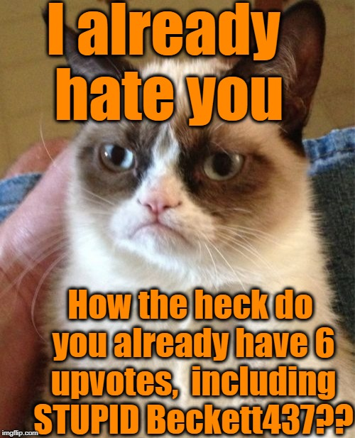 Grumpy Cat Meme | I already hate you How the heck do you already have 6 upvotes,  including STUPID Beckett437?? | image tagged in memes,grumpy cat | made w/ Imgflip meme maker