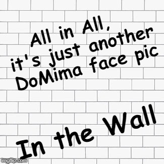 All in All,  it's just another DoMima face pic In the Wall | made w/ Imgflip meme maker