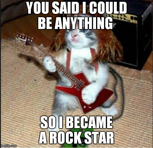 YOU SAID I COULD BE ANYTHING SO I BECAME  A ROCK STAR | image tagged in rockstar cat | made w/ Imgflip meme maker