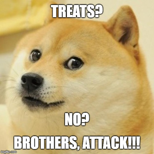 Doge Meme | TREATS? BROTHERS, ATTACK!!! NO? | image tagged in memes,doge | made w/ Imgflip meme maker