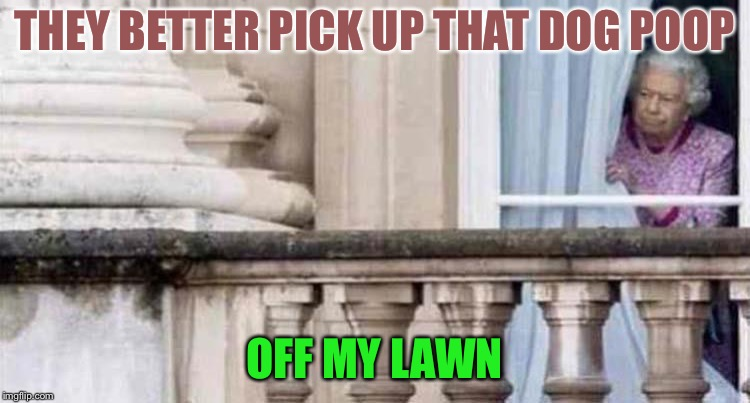 Some people! | THEY BETTER PICK UP THAT DOG POOP OFF MY LAWN | image tagged in dog week,poop,dogs,memes,funny | made w/ Imgflip meme maker