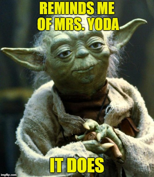 Star Wars Yoda Meme | REMINDS ME OF MRS. YODA IT DOES | image tagged in memes,star wars yoda | made w/ Imgflip meme maker