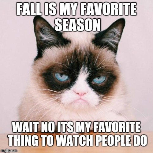 FALL IS MY FAVORITE SEASON WAIT NO ITS MY FAVORITE THING TO WATCH PEOPLE DO | image tagged in grumpy cat again | made w/ Imgflip meme maker