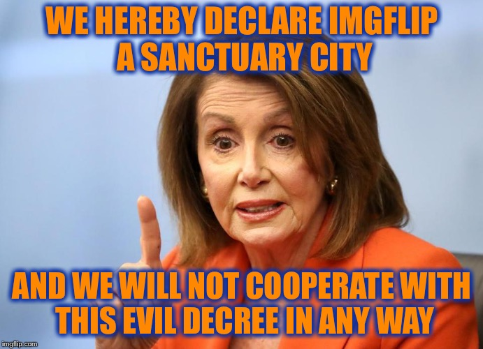 WE HEREBY DECLARE IMGFLIP A SANCTUARY CITY AND WE WILL NOT COOPERATE WITH THIS EVIL DECREE IN ANY WAY | made w/ Imgflip meme maker