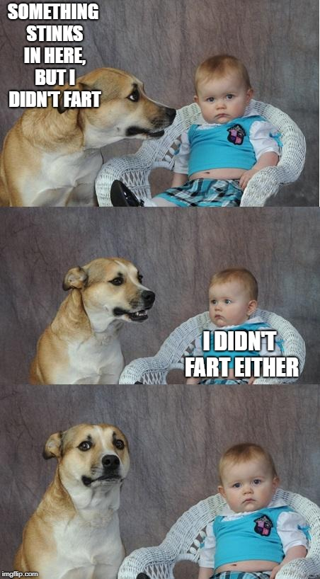 Bad joke dog | SOMETHING STINKS IN HERE, BUT I DIDN'T FART I DIDN'T FART EITHER | image tagged in bad joke dog | made w/ Imgflip meme maker