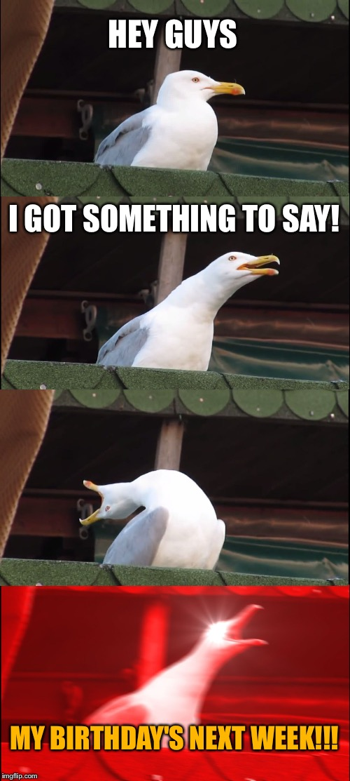 I'll be turning 16 in a week | HEY GUYS I GOT SOMETHING TO SAY! MY BIRTHDAY'S NEXT WEEK!!! | image tagged in memes,inhaling seagull,birthday,16,16th birthday,week | made w/ Imgflip meme maker