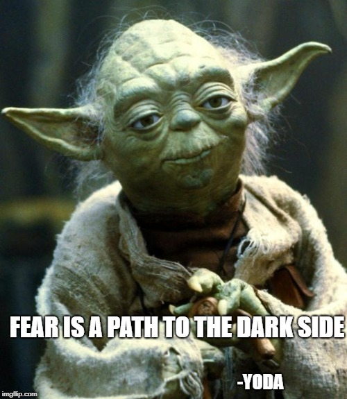 Star Wars Yoda Meme | FEAR IS A PATH TO THE DARK SIDE -YODA | image tagged in memes,star wars yoda | made w/ Imgflip meme maker