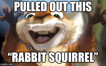 "PULLED OUT THIS ""RABBIT SQUIRREL"" 