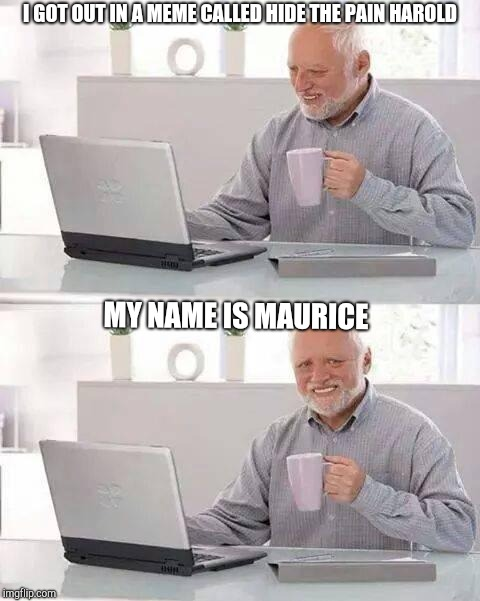 Hide the pain Maurice | I GOT OUT IN A MEME CALLED HIDE THE PAIN HAROLD MY NAME IS MAURICE | image tagged in memes,hide the pain harold,hide the pain maurice | made w/ Imgflip meme maker
