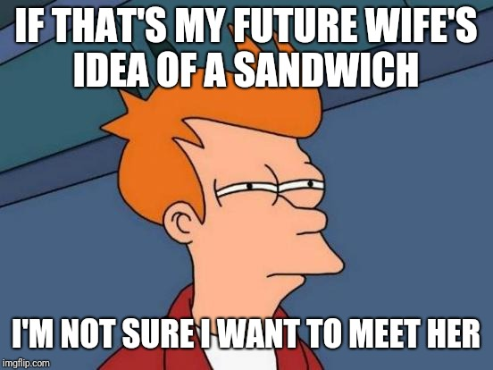 Futurama Fry Meme | IF THAT'S MY FUTURE WIFE'S IDEA OF A SANDWICH I'M NOT SURE I WANT TO MEET HER | image tagged in memes,futurama fry | made w/ Imgflip meme maker