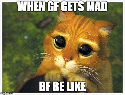 Shrek Cat Meme | WHEN GF GETS MAD BF BE LIKE | image tagged in memes,shrek cat | made w/ Imgflip meme maker