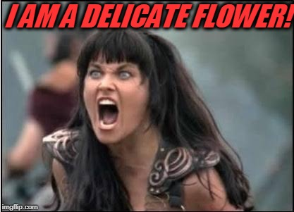 JakkFrost, this is for you!  | I AM A DELICATE FLOWER! | image tagged in zena,nixieknox,jakkfrost,delicate flower | made w/ Imgflip meme maker