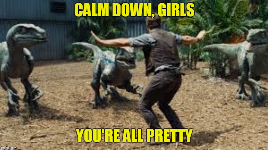 CALM DOWN, GIRLS YOU'RE ALL PRETTY | made w/ Imgflip meme maker