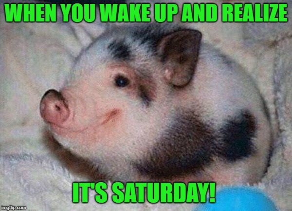 when you wake up and realize |  WHEN YOU WAKE UP AND REALIZE; IT'S SATURDAY! | image tagged in saturday | made w/ Imgflip meme maker