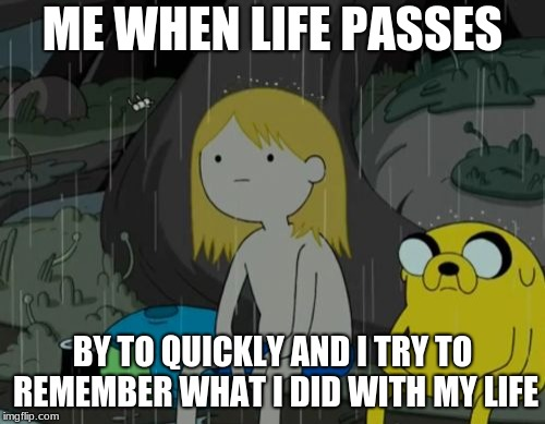 Life Sucks | ME WHEN LIFE PASSES BY TO QUICKLY AND I TRY TO REMEMBER WHAT I DID WITH MY LIFE | image tagged in memes,life sucks | made w/ Imgflip meme maker