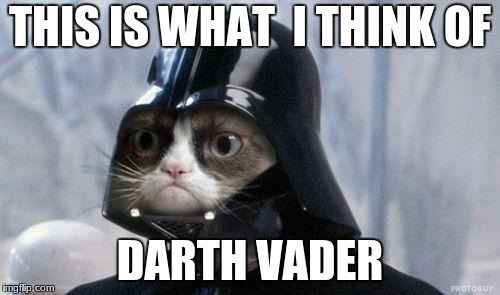 Star wars day may 4th | THIS IS WHAT  I THINK OF DARTH VADER | image tagged in memes,grumpy cat star wars,grumpy cat,star wars,funny | made w/ Imgflip meme maker