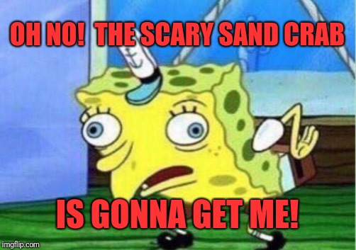 Mocking Spongebob Meme | OH NO!  THE SCARY SAND CRAB IS GONNA GET ME! | image tagged in memes,mocking spongebob | made w/ Imgflip meme maker