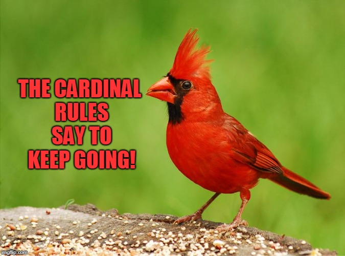 Cardinal  | THE CARDINAL RULES SAY TO KEEP GOING! | image tagged in cardinal | made w/ Imgflip meme maker
