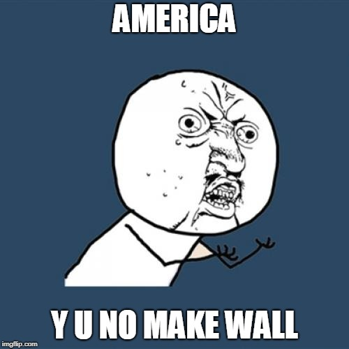 Y U No Meme | AMERICA Y U NO MAKE WALL | image tagged in memes,y u no | made w/ Imgflip meme maker
