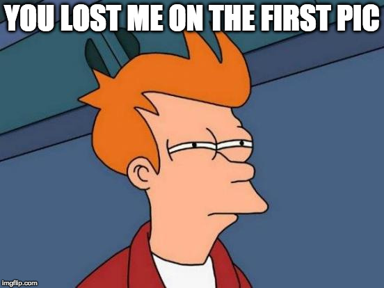 Futurama Fry Meme | YOU LOST ME ON THE FIRST PIC | image tagged in memes,futurama fry | made w/ Imgflip meme maker