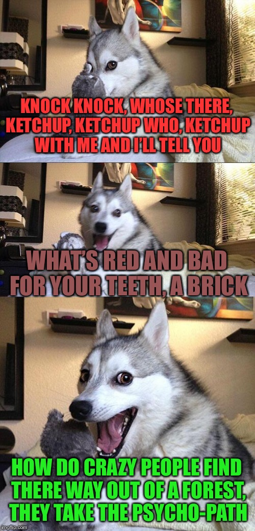 Bad Pun Dog Meme | KNOCK KNOCK, WHOSE THERE, KETCHUP, KETCHUP WHO, KETCHUP WITH ME AND I'LL TELL YOU WHAT'S RED AND BAD FOR YOUR TEETH, A BRICK HOW DO CRAZY PE | image tagged in memes,bad pun dog | made w/ Imgflip meme maker