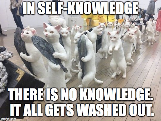 IN SELF-KNOWLEDGE THERE IS NO KNOWLEDGE. IT ALL GETS WASHED OUT. | image tagged in strange feeling | made w/ Imgflip meme maker