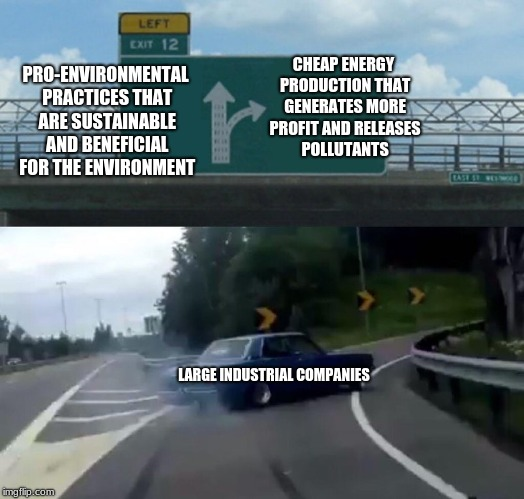 Left Exit 12 Off Ramp Meme | PRO-ENVIRONMENTAL PRACTICES THAT ARE SUSTAINABLE AND BENEFICIAL FOR THE ENVIRONMENT CHEAP ENERGY PRODUCTION THAT GENERATES MORE PROFIT AND R | image tagged in memes,left exit 12 off ramp | made w/ Imgflip meme maker