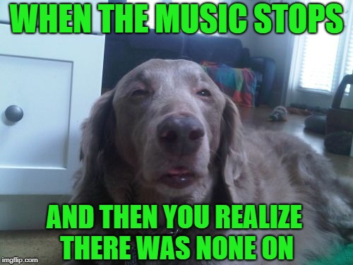 High Dog | WHEN THE MUSIC STOPS AND THEN YOU REALIZE THERE WAS NONE ON | image tagged in memes,high dog,dog week | made w/ Imgflip meme maker