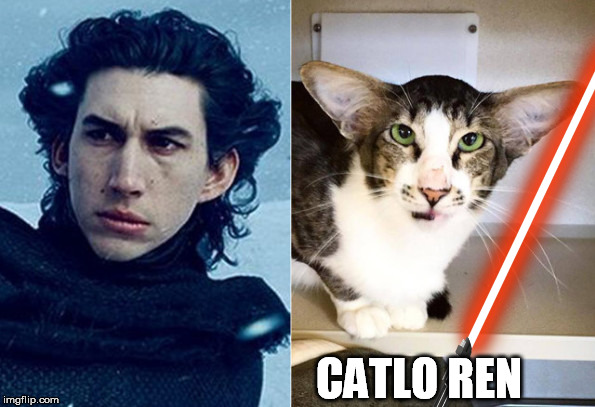 CATLO REN | made w/ Imgflip meme maker