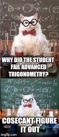 Math puns: The first sine of madness | WHY DID THE STUDENT FAIL ADVANCED TRIGONOMETRY? COSECANT FIGURE IT OUT | image tagged in trigonometry,math,chemistry cat | made w/ Imgflip meme maker