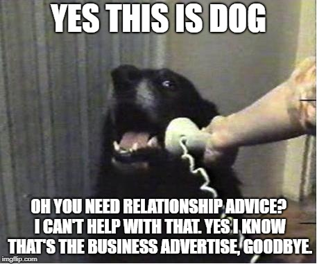 Yes this is dog | YES THIS IS DOG OH YOU NEED RELATIONSHIP ADVICE? I CAN'T HELP WITH THAT. YES I KNOW THAT'S THE BUSINESS ADVERTISE, GOODBYE. | image tagged in yes this is dog,dog week memes | made w/ Imgflip meme maker
