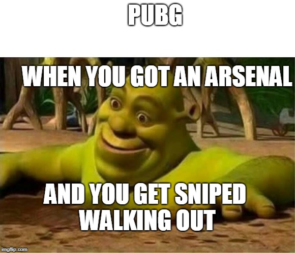 shrek | PUBG WHEN YOU GOT AN ARSENAL AND YOU GET SNIPED WALKING OUT | image tagged in shrek | made w/ Imgflip meme maker