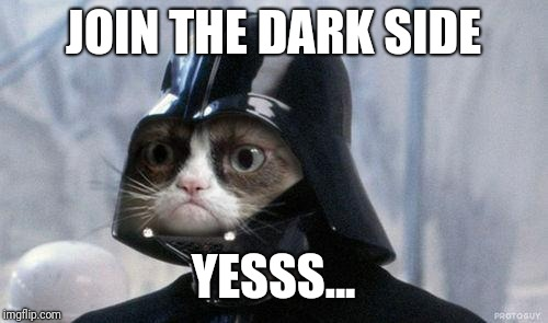 Grumpy Cat Star Wars | JOIN THE DARK SIDE YESSS... | image tagged in memes,grumpy cat star wars,grumpy cat | made w/ Imgflip meme maker