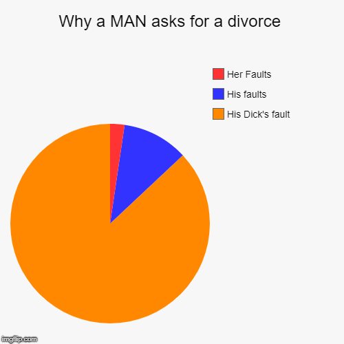 Why a MAN asks for a divorce | His Dick's fault, His faults, Her Faults | image tagged in funny,pie charts | made w/ Imgflip pie chart maker