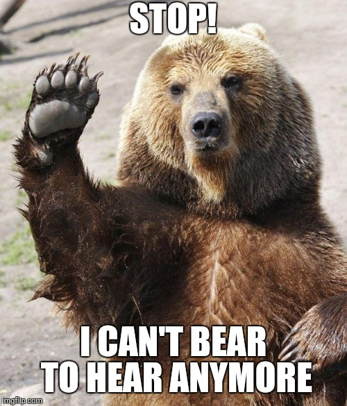Hello bear | STOP! I CAN'T BEAR TO HEAR ANYMORE | image tagged in hello bear | made w/ Imgflip meme maker