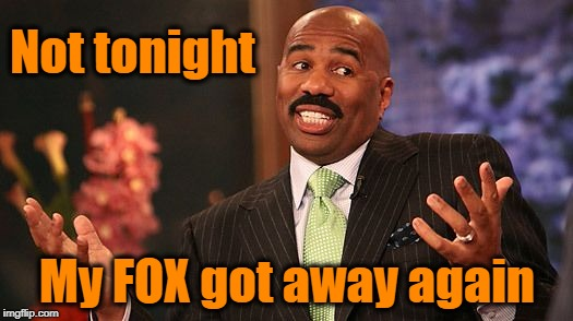 shrug | Not tonight My FOX got away again | image tagged in shrug | made w/ Imgflip meme maker