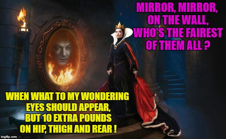 Honest Reflections | MIRROR, MIRROR, ON THE WALL, WHO'S THE FAIREST OF THEM ALL ? WHEN WHAT TO MY WONDERING EYES SHOULD APPEAR, BUT 10 EXTRA POUNDS ON HIP, THIGH | image tagged in memes,funny,mirror,honesty | made w/ Imgflip meme maker