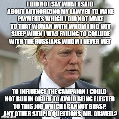 Donald Trump | I DID NOT SAY WHAT I SAID ABOUT AUTHORIZING MY LAWYER TO MAKE PAYMENTS WHICH I DID NOT MAKE TO THAT WOMAN WITH WHOM I DID NOT SLEEP WHEN I W | image tagged in donald trump | made w/ Imgflip meme maker