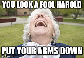 YOU LOOK A FOOL HAROLD PUT YOUR ARMS DOWN | made w/ Imgflip meme maker