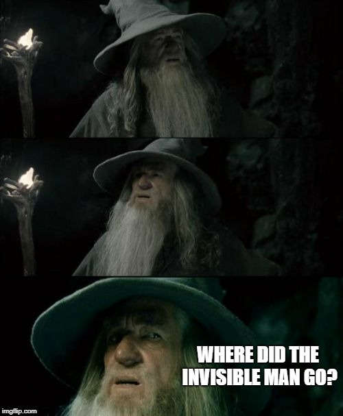 Confused Gandalf Meme | WHERE DID THE INVISIBLE MAN GO? | image tagged in memes,confused gandalf | made w/ Imgflip meme maker