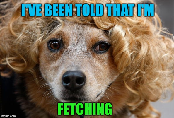 FETCHING I'VE BEEN TOLD THAT I'M | made w/ Imgflip meme maker